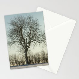 Winter tree in the low sun Stationery Cards