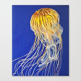 Northern Sea Nettle 3 Canvas Print