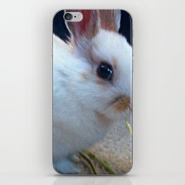 Hopping Down The Country Lane iPhone Skin