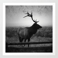 Mystic Elk Art Print