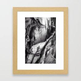 Eucalyptus Abstract Framed Art Print