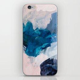 Palette No. Twenty Five iPhone Skin
