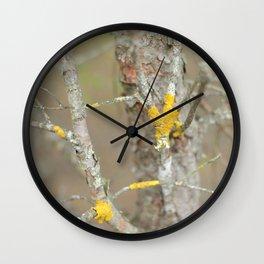 drop of color Wall Clock