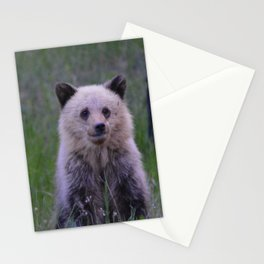 The most adorable grizzly bear cub in Jasper National Park | Canada Stationery Cards
