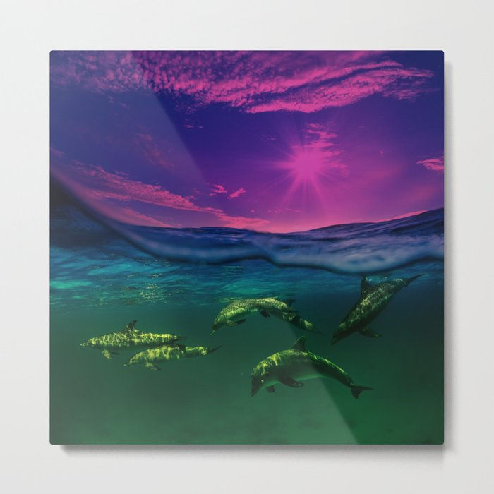 Dreaming Of Dolphins Metal Print