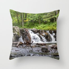 Huron River Waterfalls Throw Pillow