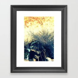 Log in the Forest  Framed Art Print