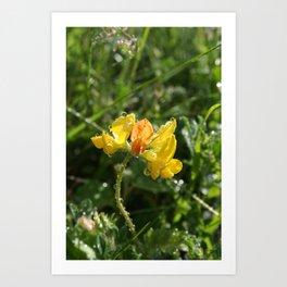 Gul blomst Art Print