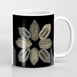 Butternut Compass Rose Coffee Mug
