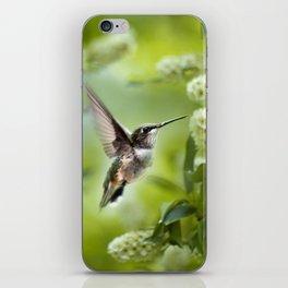 Hummingbird Love iPhone Skin
