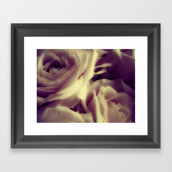 {English Rose} Framed Art Print