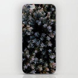 dewy yew iPhone Skin