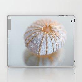 Sea Urchin Shell Laptop & iPad Skin