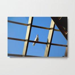 Caged Bird Metal Print