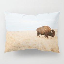 Buffalo Window Pillow Sham