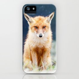 I Can't Stand the Rain (Red Fox in a rain shower) iPhone Case