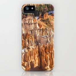 Hoodoo Bonanza iPhone Case