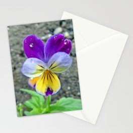 Pretty Pansy Stationery Cards