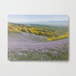 California Wildflowers Metal Print