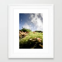fairy tale Framed Art Prints featuring Fairy Tale by Tom Radenz