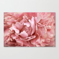 peony Canvas Prints featuring Peony by Cindi Ressler Photography