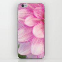 dahlia iPhone & iPod Skins featuring dahlia by Beverly LeFevre