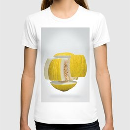 Flying Casaba Melon T-shirt