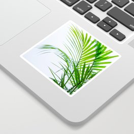 Palm leaves paradise Sticker