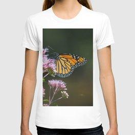 August Monarch T-shirt