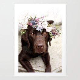 Flower Crown Beautiful Dog Portrait Art Print
