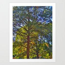 Trees love sun! Art Print