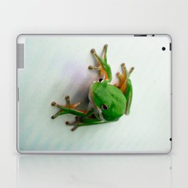 Green Tree Frog Laptop & iPad Skin