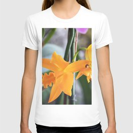 Longwood Gardens Orchid Extravaganza 71 T-shirt