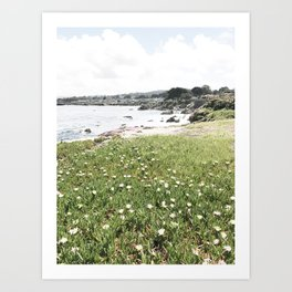 monterey california shore part two Art Print