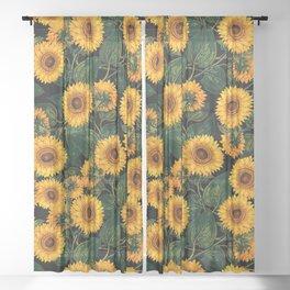 Helianthus Annuus II Sheer Curtain