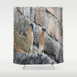 Come over here Shower Curtain