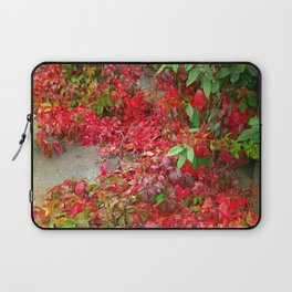 Cascade of Leaves Laptop Sleeve