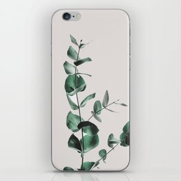 Eucalyptus iPhone Skin