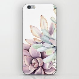 Desert Succulents on White iPhone Skin