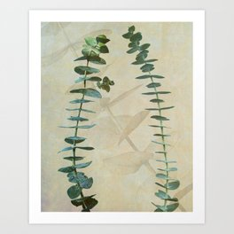 Eucalyptus in Gold  Art Print