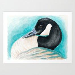 Canada Goose Teal Watercolor Art Art Print