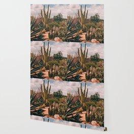 Cactus_0012 Wallpaper