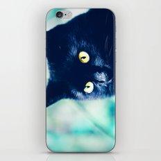 Bocelli iPhone & iPod Skin