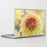 fifth harmony Laptop & iPad Skins featuring Harmony by Kim Hojnacki Photography