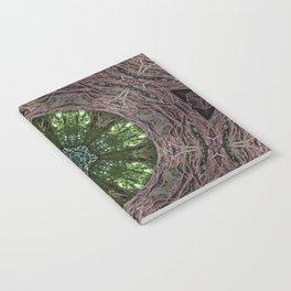 Noya Rao Notebook