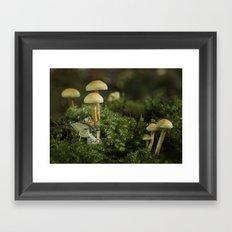 Pixie and 'shrooms Framed Art Print