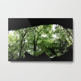 Travel Photography : Los Tres Ojos Forest - Dominican Republic Metal Print