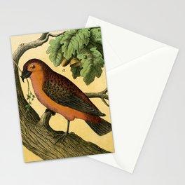 7 Birds Stationery Cards