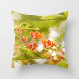 Azalea Glowing Embers orange flowers Throw Pillow