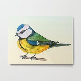 Blue tit watercolor Metal Print